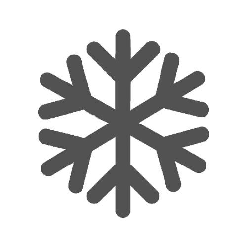 Winter Sicherheitsschuhe