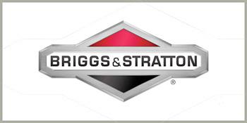 Briggss&Statton Rasenmäher